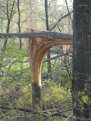 Tornado Damage 037