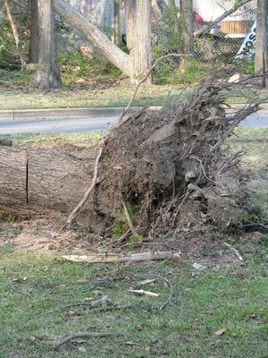 Tornado Damage 020