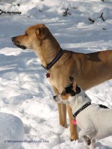 Meg and Pip Snow