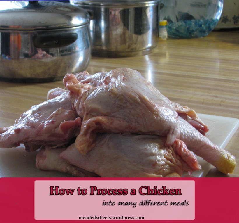 Chicken Processing Cover