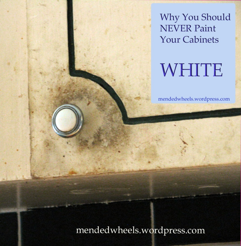 Just say NO to white cabinets