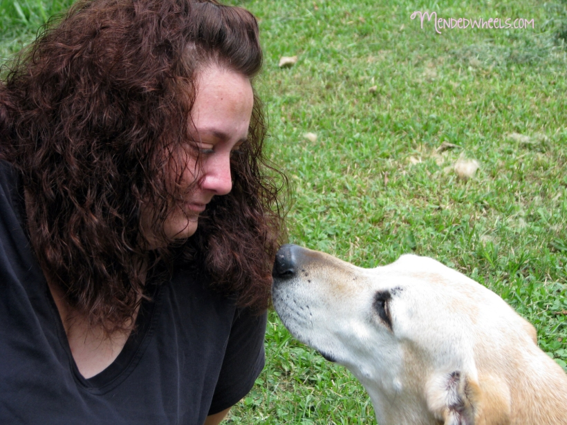 Losing a beloved pet is difficult.  Hopefully, these tips will help you move forward while you grieve.